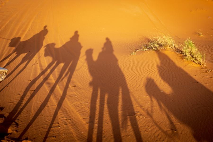 Camel Tour, Morocco