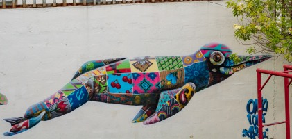 The dolphin patchwork mural